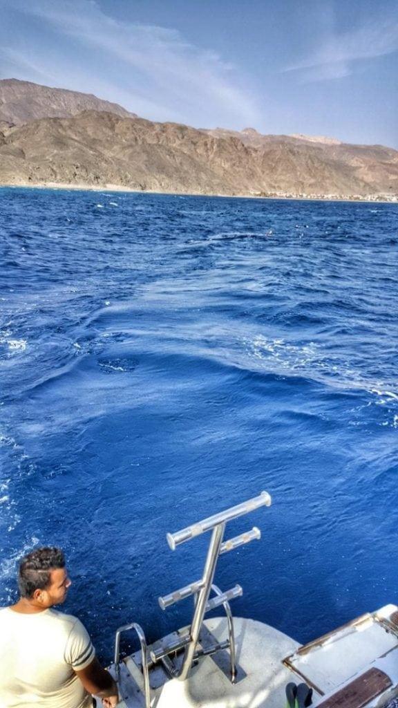 هل ترون أولئك المجانين الذين يسبحون في البحر الهائج؟ نعم، كنت معهم